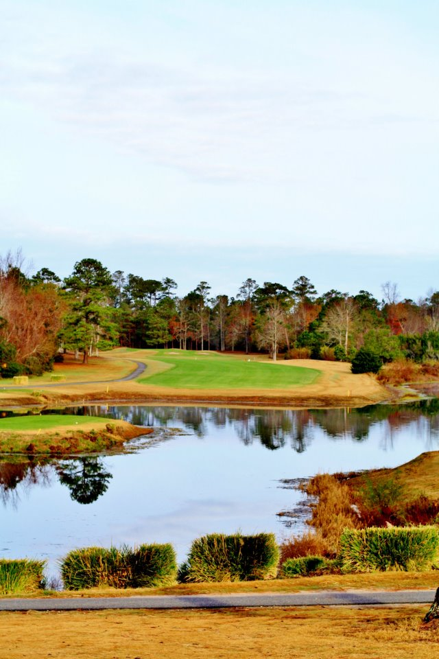 Golf Course | Belvedere Country Club